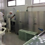 Lavadoras de vajilla